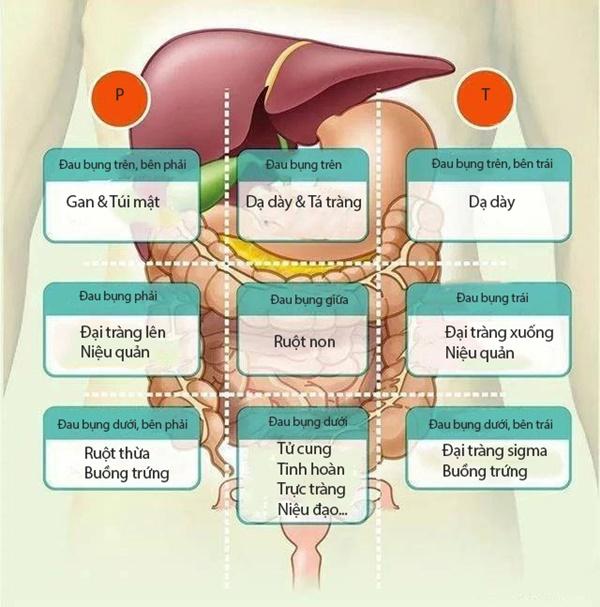 Đau bụng không nhất thiết là vấn đề về đường tiêu hóa: Nếu bị đau ở 8 vị trí này trên bụng, bạn phải cảnh giác ngay-1