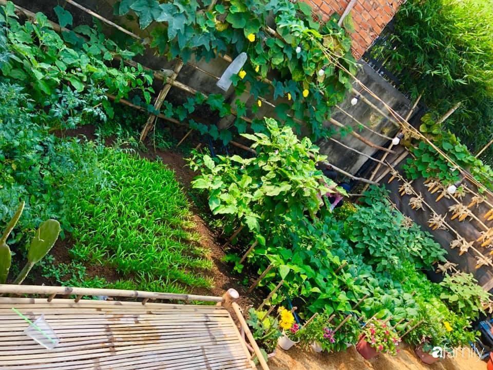 Bí quyết trộn đất giản đơn mà hiệu quả giúp khu vườn 70m² trồng cây gì cũng tốt tươi xanh mát của mẹ đảm ở Huế-5