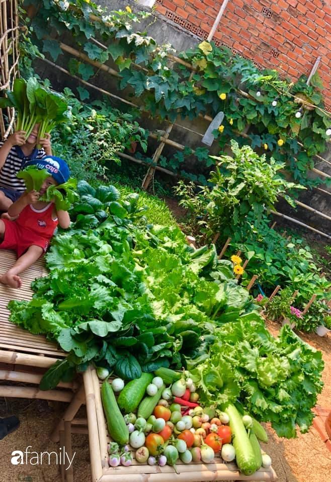 Bí quyết trộn đất giản đơn mà hiệu quả giúp khu vườn 70m² trồng cây gì cũng tốt tươi xanh mát của mẹ đảm ở Huế-11