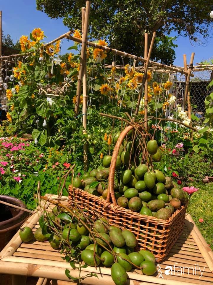 Bí quyết trộn đất giản đơn mà hiệu quả giúp khu vườn 70m² trồng cây gì cũng tốt tươi xanh mát của mẹ đảm ở Huế-16