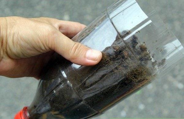 Nhặt lại chai nhựa làm chỗ trồng rau, vài tuần sau lớn nhanh như thổi ai cũng ngạc nhiên-3