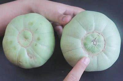 Khi mua dưa lê, nhìn vào rốn quả, thấy điều này chị em mua ngay kẻo hết-1