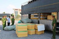 Quảng Bình: Bắt quả tang xe ô tô chở hơn 700kg thịt chó, mèo bốc mùi hôi thối