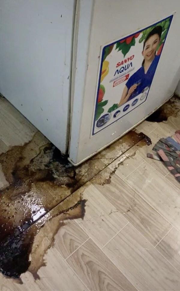 Trở lại thành phố, nữ sinh bủn rủn chân tay phát hiện sinh vật bò lúc nhúc trong tủ lạnh, nước đen ngòm hôi thối tràn ngập phòng-2