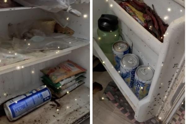 Nữ sinh bủn rủn chân tay phát hiện sinh vật bò lúc nhúc trong tủ lạnh