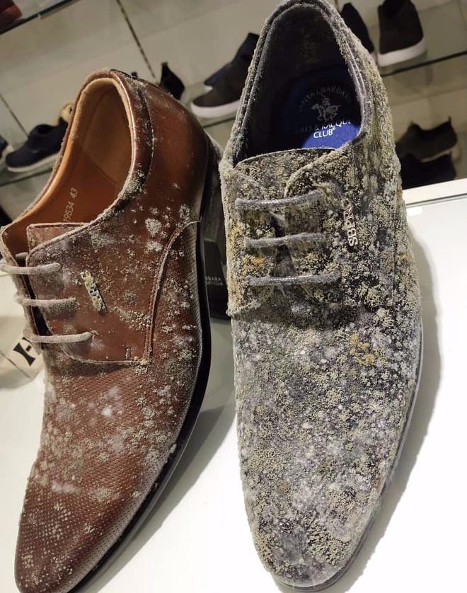 Giày, túi đắt đỏ ở cửa hàng mốc trắng xóa sau 2 tháng nghỉ bán-1