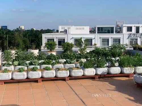 Tận dụng can nhựa mẹ đảm Cần Thơ biến sân thượng thành khu vườn xanh mát-1