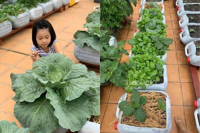 Tận dụng can nhựa mẹ đảm Cần Thơ biến sân thượng thành khu vườn xanh mát-10