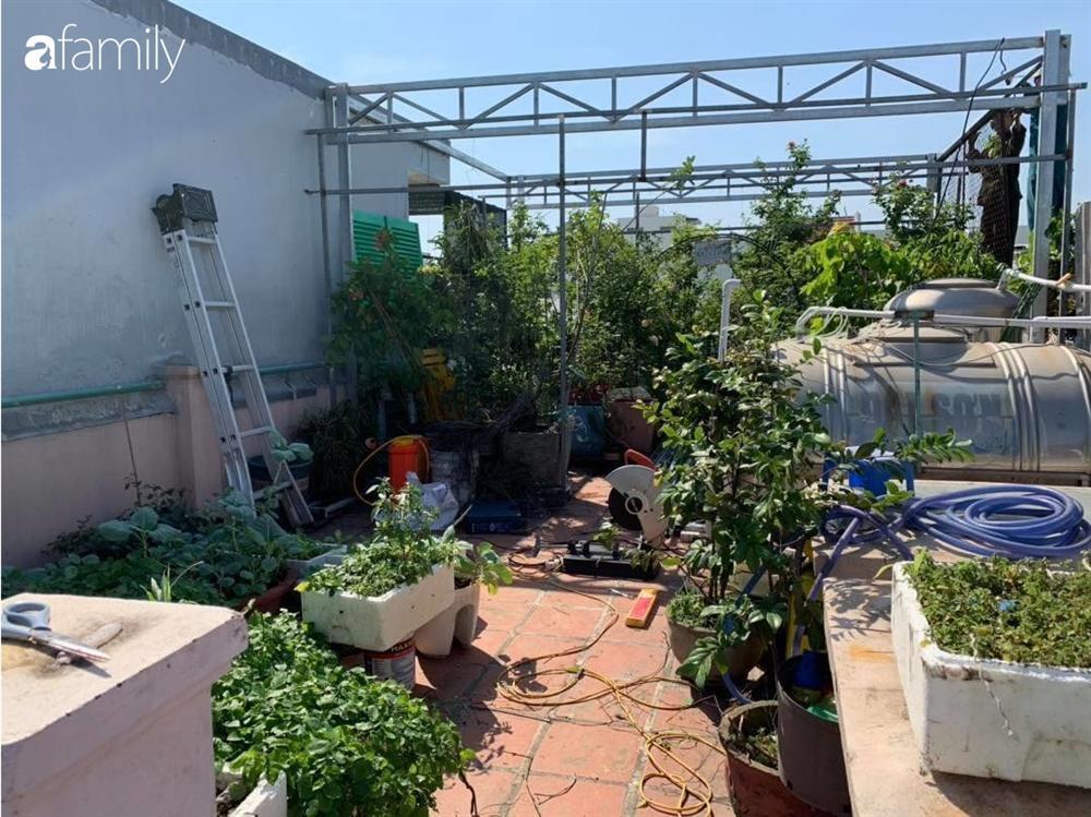 Ghen tị với góc chill rộng thoáng 40m² trên sân thượng tràn ngập hồng ngoại của mẹ đảm tại Nha Trang-7
