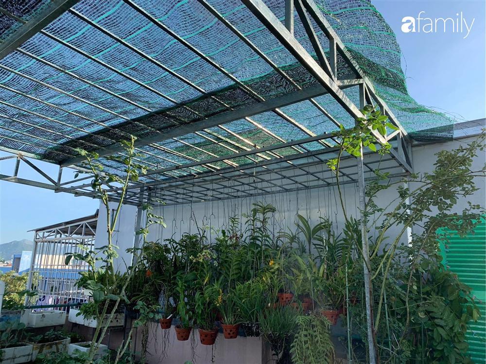 Ghen tị với góc chill rộng thoáng 40m² trên sân thượng tràn ngập hồng ngoại của mẹ đảm tại Nha Trang-9
