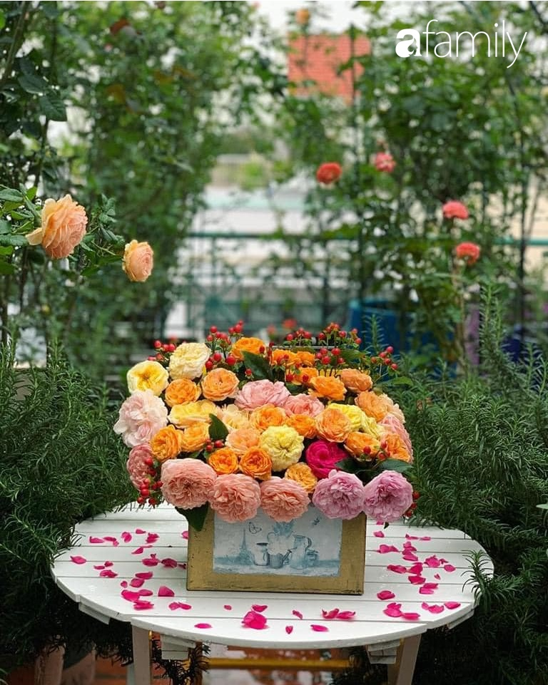 Ghen tị với góc chill rộng thoáng 40m² trên sân thượng tràn ngập hồng ngoại của mẹ đảm tại Nha Trang-22