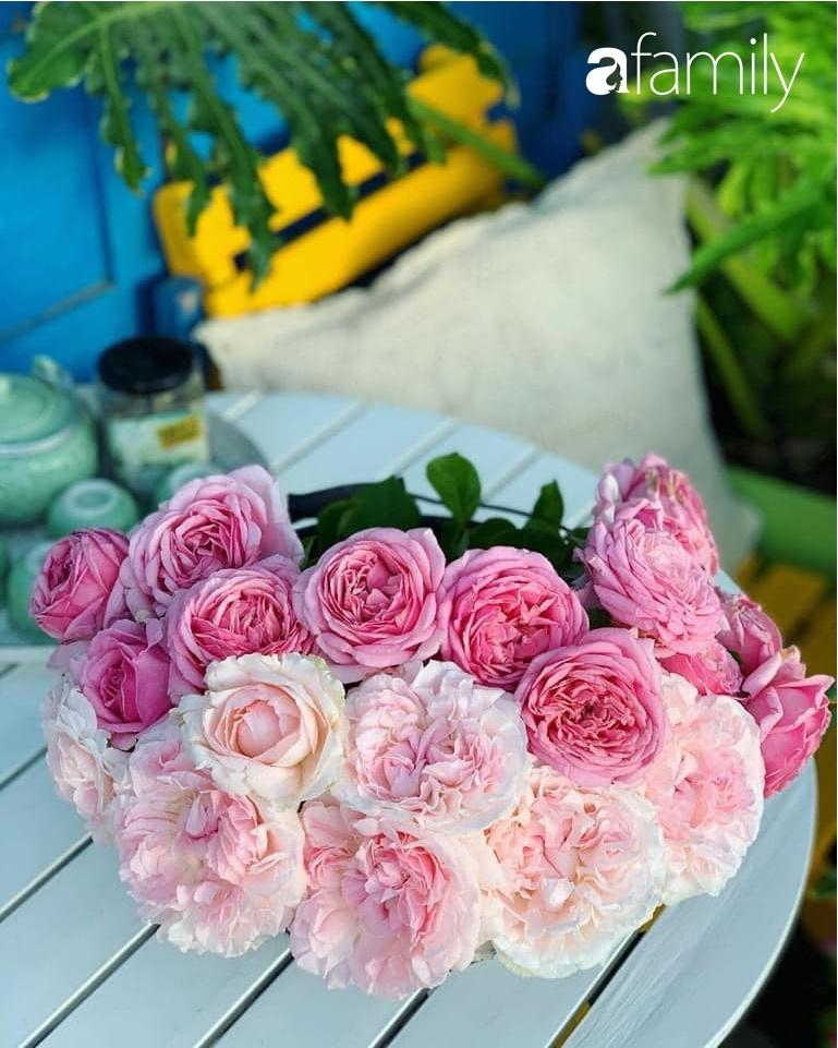 Ghen tị với góc chill rộng thoáng 40m² trên sân thượng tràn ngập hồng ngoại của mẹ đảm tại Nha Trang-24