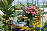 'Ghen tị' với góc chill rộng thoáng 40m² trên sân thượng tràn ngập hồng ngoại của mẹ đảm tại Nha Trang