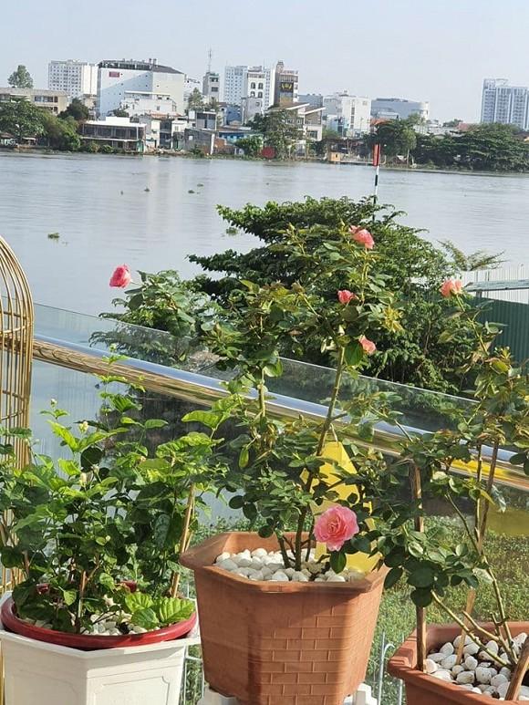 Vườn hồng tuyệt đẹp trong căn biệt thự 1300m2 của vợ chồng Vũ Thu Phương-9