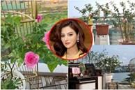 Vườn hồng tuyệt đẹp trong căn biệt thự 1300m2 của vợ chồng Vũ Thu Phương