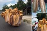 Bánh mì mini chỉ 1.000 đồng/chiếc đang gây bão mạng, đặt mua số lượng lớn giá còn rẻ đến bất ngờ-6