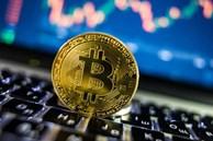 Giả vờ gây quỹ cho dự án balo thông minh, thanh niên chiếm đoạt 800.000 USD để chơi Bitcoin và trả nợ