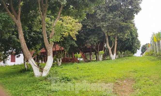 Cận cảnh biệt thự, nhà vườn trái phép mọc trên đồi ở Ba Vì-12