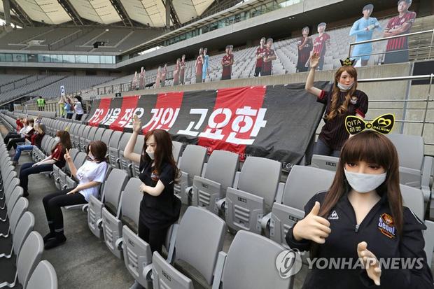 CLB Hàn Quốc gửi lời xin lỗi sau phốt cho búp bê tình dục lên khán đài để cổ vũ đội nhà-2