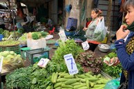 Đi chợ đầu mối, cầm 10.000 đồng đủ rau xanh ăn cả ngày cho gia đình