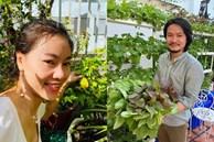Khám phá vườn rau sạch của vợ chồng 'đạo diễn của các Hoa hậu' Hoàng Nhật Nam