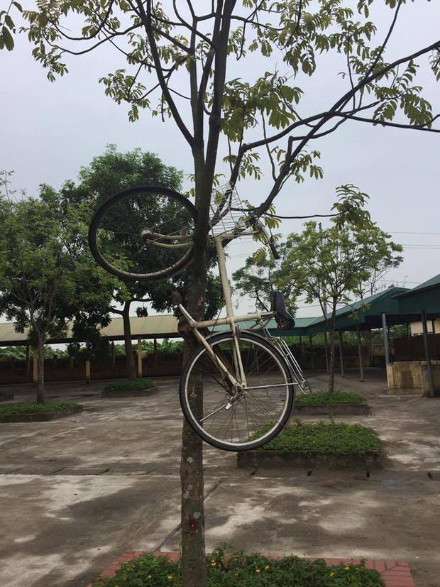 Tan học thì chẳng thấy xe đạp đâu, nam sinh đỏ mắt đi tìm nào ngờ ở nơi xa tít chân trời gần ngay trước mặt-4