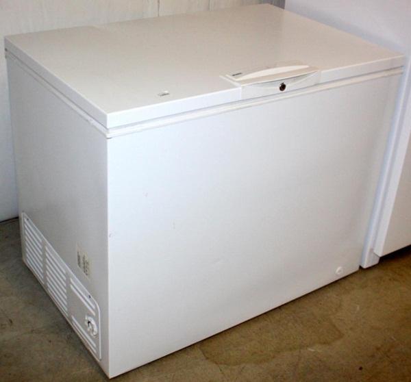 Người phụ nữ bị bỏng do cháy nhà khiến dân Mỹ thương xót trước khi chiếc tủ lạnh chứa xác người tố cáo tội ác và danh tính thật của ả-5