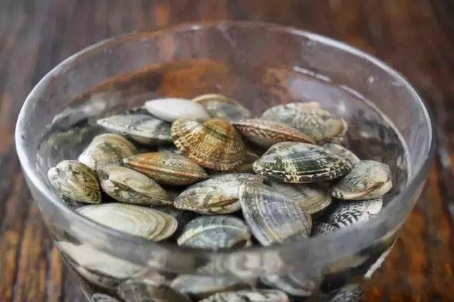 Ngoài muối, thêm vài giọt nguyên liệu này ngâm, ngao đảm bảo nhả sạch cát không còn một hạt-3