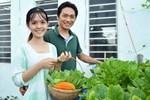 Bà mẹ trẻ ở Hà Nội chia sẻ kinh nghiệm trồng vườn treo Babylon ngay giữa lòng thành phố đã 10 năm vẫn xanh tốt-23
