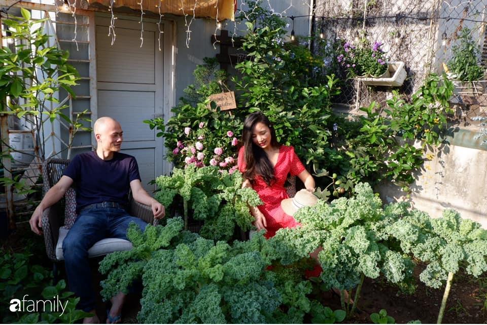 Bà mẹ trẻ ở Hà Nội chia sẻ kinh nghiệm trồng vườn treo Babylon ngay giữa lòng thành phố đã 10 năm vẫn xanh tốt-1