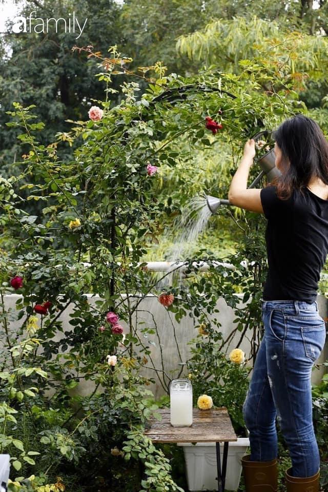 Bà mẹ trẻ ở Hà Nội chia sẻ kinh nghiệm trồng vườn treo Babylon ngay giữa lòng thành phố đã 10 năm vẫn xanh tốt-4