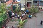 TP.HCM: Sau cơn mưa lớn kèm gió giật, nhiều cây xanh lại gãy đổ đè nhà dân, đè cả người đi đường-4