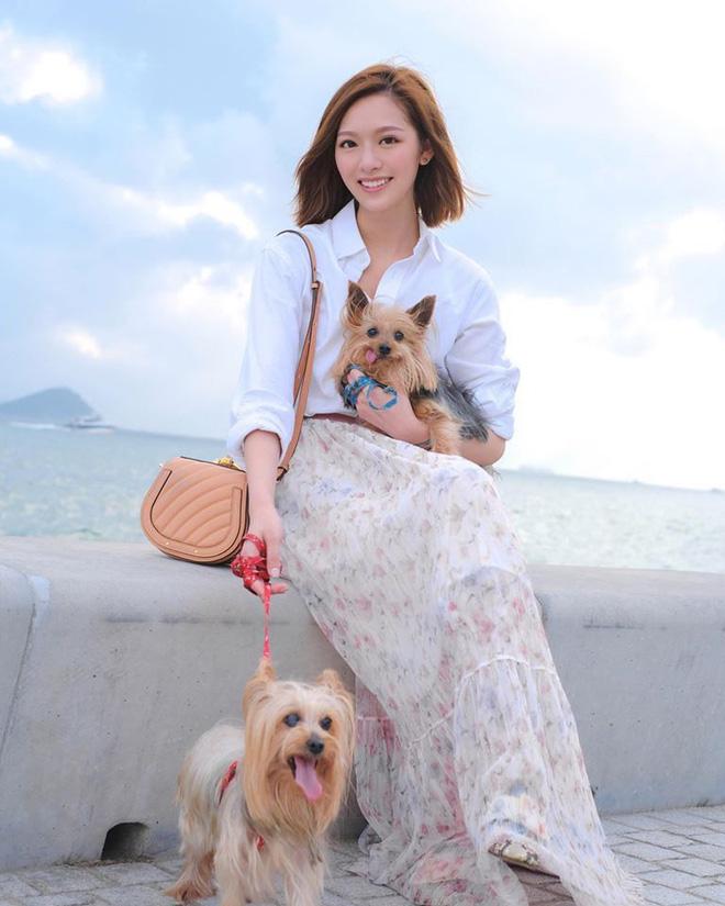 Hoa hậu Hong Kong hẹn hò thiếu gia sòng bạc Macau: Gia thế khủng và gợi cảm cỡ nào?-15
