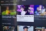 Cảnh báo tình trạng YouTube gợi ý xem video về cần sa ở Việt Nam