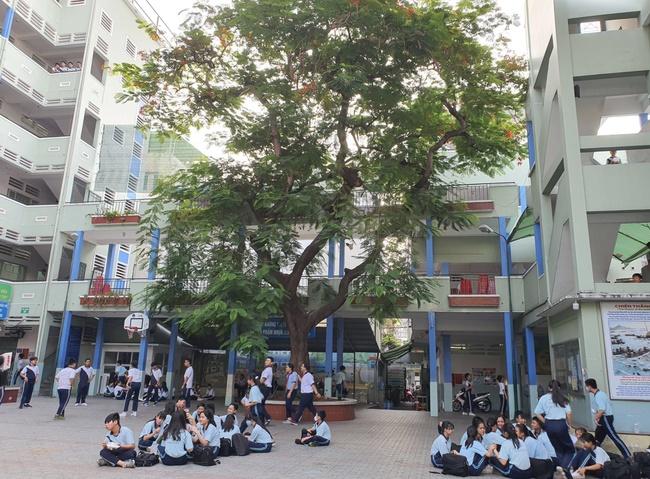 Hiệu trưởng THCS Bạch Đằng quyết định cho học sinh đi học ngay sau sự cố cây phượng đổ: Phụ huynh lo lắng nhưng tin vào trường-3