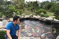 Chiêm ngưỡng hồ cá Koi của Bằng Kiều trên đất Mỹ