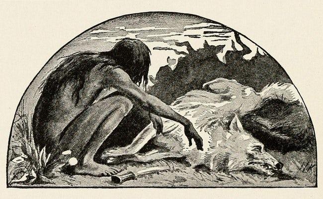 Nguyên mẫu đời thực của cậu bé rừng xanh: Không nói được tiếng người, sống như kẻ thiểu năng và chết trong bệnh tật sau 20 năm rời bầy sói-3