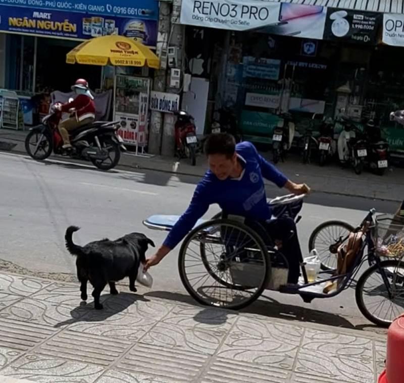 """CLIP: Rụng tim"""" với chú chó xoáy Phú Quốc thay chủ tật nguyền xếp hàng nhận gạo-4"""