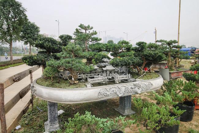 Chiêm ngưỡng tác phẩm Đồi tùng La Hán độc nhất vô nhị giá 350 triệu-1