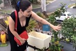 Khám phá cơ ngơi tiền tỷ của Bà mối Cát Tường ở Úc-11