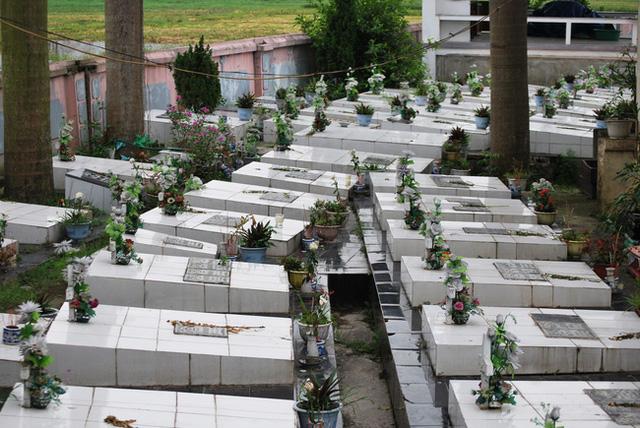 Gạt bỏ mọi đàm tiếu ác ý, người phụ nữ ở Hà Nội vẫn nhặt hàng vạn xác thai nhi về chôn ở ruộng nhà mình-7