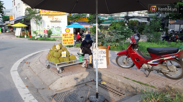 Sầu riêng bao ăn chất đống khắp vỉa hè Sài Gòn với giá siêu rẻ chỉ 50.000 đồng/kg: Gặp hạn mặn nên bán được đồng nào hay đồng đó!-1