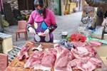 Sau quyết định nhập lợn sống về giết mổ để bình ổn giá, giá lợn hơi giảm nhẹ nhưng giá thịt ở chợ dân sinh vẫn ở mức gần 200 nghìn đồng/kg
