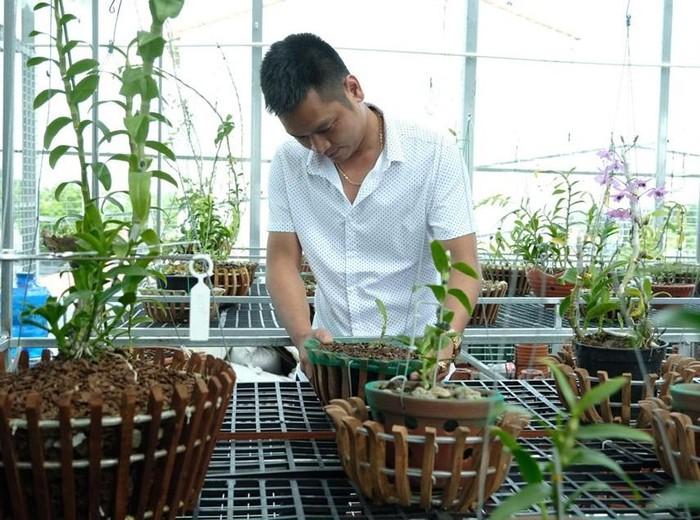 Vườn lan đột biến hơn 100 loại, gần 10 tỷ ở Mê Linh-7