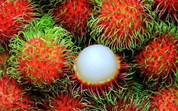"""7 loại quả là đặc sản"""" của mùa hè và những lưu ý cực quan trọng khi ăn-3"""
