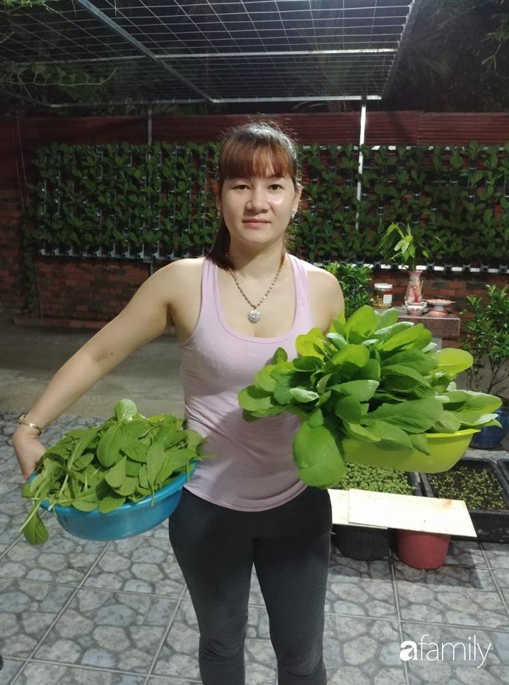 Không có đất trồng rau, mẹ đảm ở Sài Gòn vẫn tạo ra được vườn rau sạch trên tường nhờ tận dụng ống nhựa bỏ đi-3