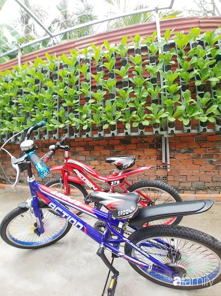 Không có đất trồng rau, mẹ đảm ở Sài Gòn vẫn tạo ra được vườn rau sạch trên tường nhờ tận dụng ống nhựa bỏ đi-14
