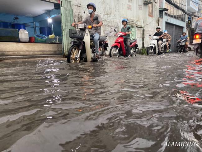 TP.HCM: Mưa lớn khiến đường ngập, cây gãy và kẹt xe, người dân lại khốn khổ lội bì bõm về nhà-1