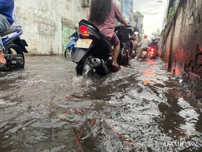 TP.HCM: Mưa lớn khiến đường ngập, cây gãy và kẹt xe, người dân lại khốn khổ lội bì bõm về nhà-6