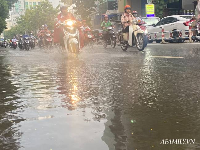 TP.HCM: Mưa lớn khiến đường ngập, cây gãy và kẹt xe, người dân lại khốn khổ lội bì bõm về nhà-9